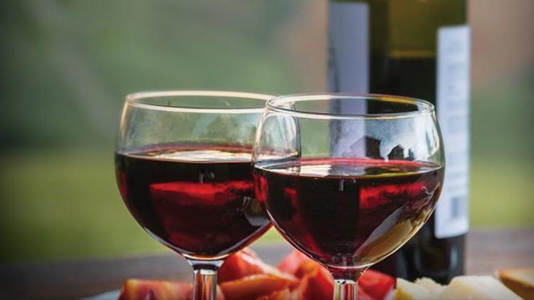 Vernon Vineyards Winery Tour